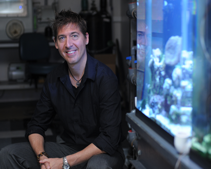 Mantis Shrimp Inspires Stronger Airplane Composites